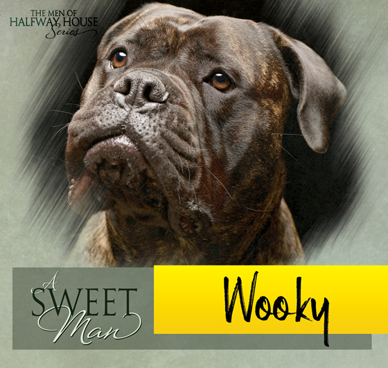 Wooky from A Sweet Man by Jaime Reese